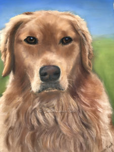 golden retriever, dog, pastel, portrait, painting, service dog, commemorative, gift