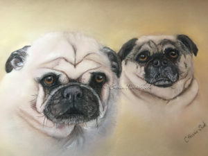 pug, portrait, pastel, painting, commission, gift, sanded paper
